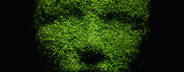 Green Living Miniatures  58