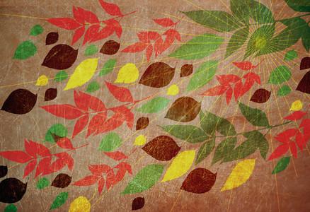 Illustrated Seasons  03