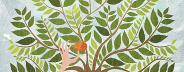 Illustrated Seasons  06