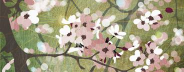 Illustrated Seasons  14