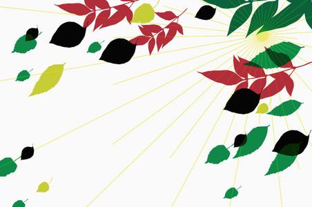 Illustrated Seasons  52