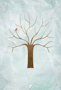 Illustrated Seasons 53