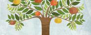 Illustrated Seasons  62