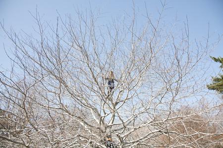 Climbing Trees 05