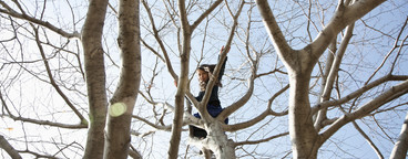 Climbing Trees  07