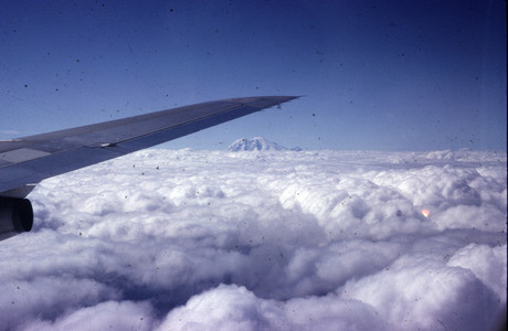 Airplane039 s Wing