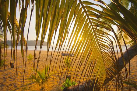 Island Ideal 17