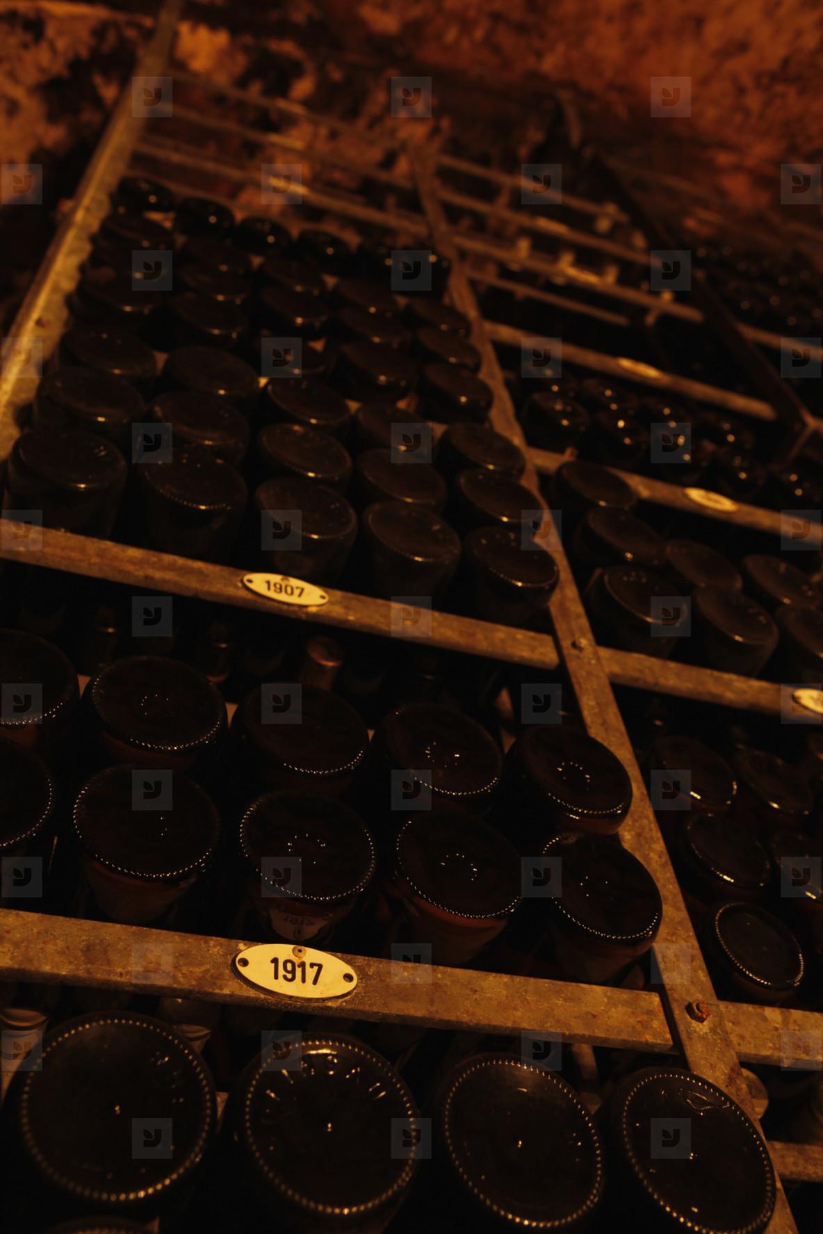 World of Wine  08