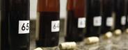 World of Wine  18