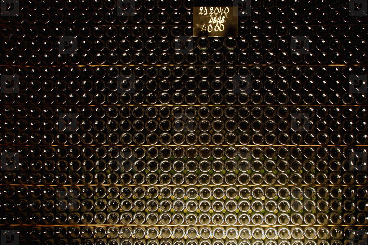 World of Wine  21