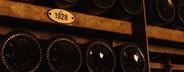 World of Wine  29