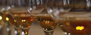 World of Wine  31