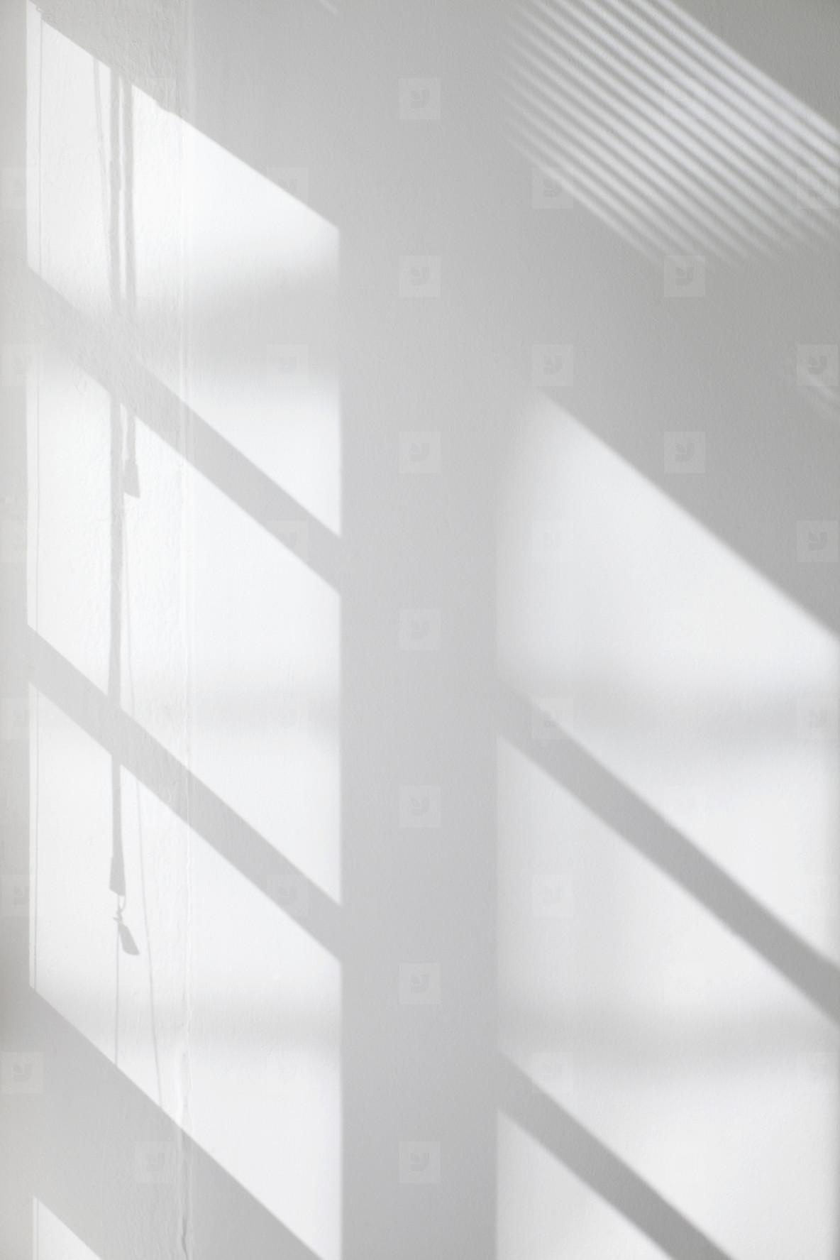Walls and Windows  06