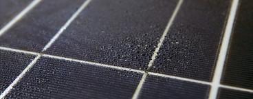 Daily Solar Activity  29