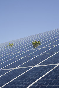 Daily Solar Activity 33