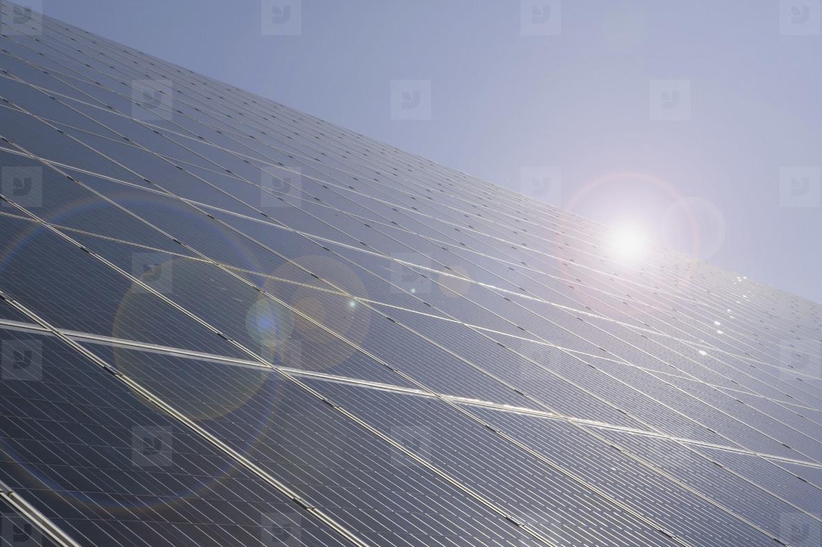 Daily Solar Activity  44
