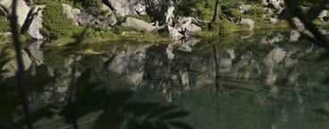 Alpine Adventures  10