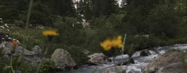 Alpine Adventures  14