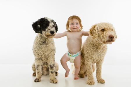 Baby Portraits 50