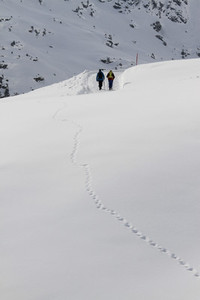 Snowy Mountain Trails  07