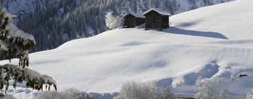Snowy Mountain Trails  15