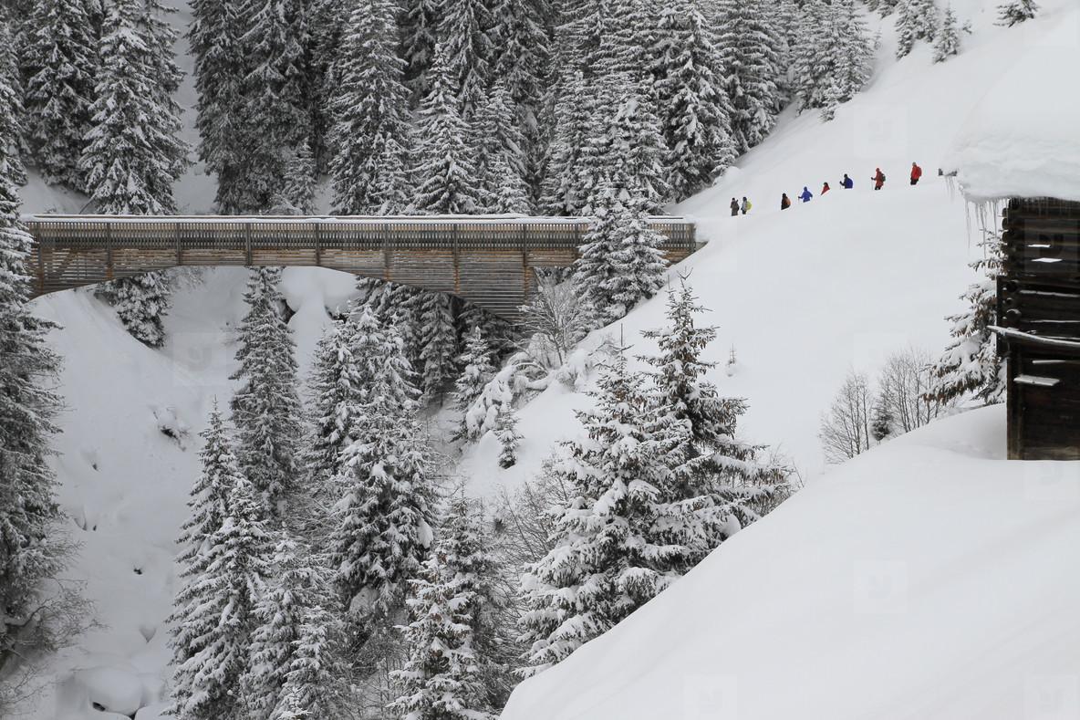 Snowy Mountain Trails  22