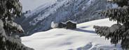 Snowy Mountain Trails  24