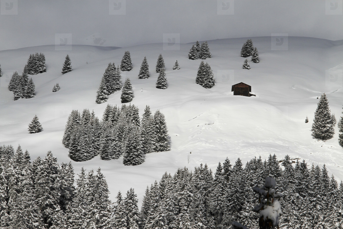 Snowy Mountain Trails  25