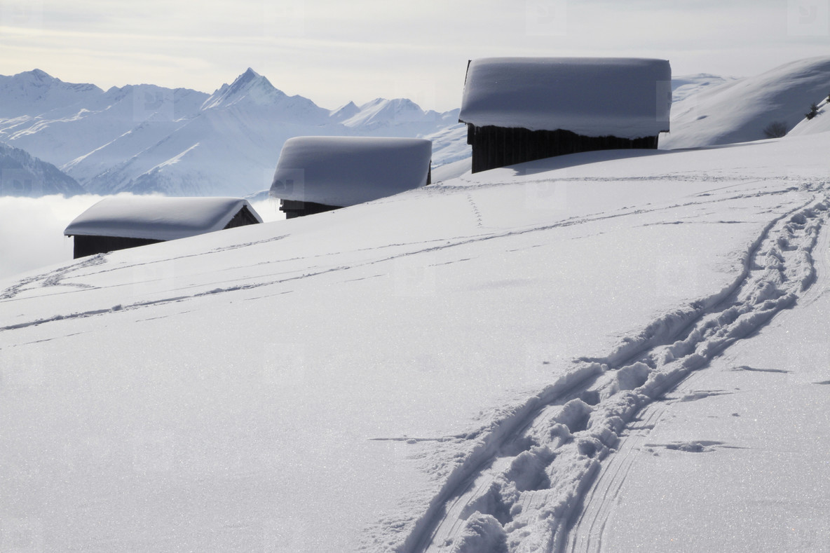 Snowy Mountain Trails  34