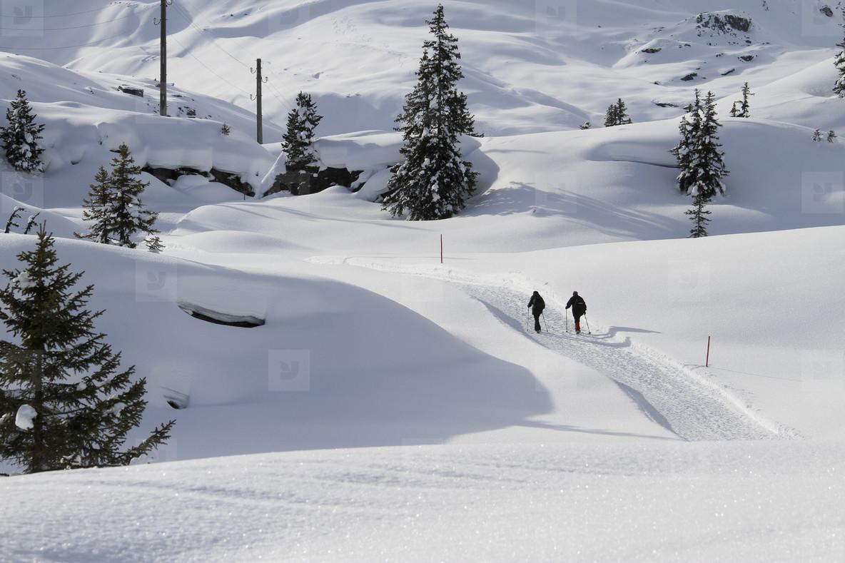 Snowy Mountain Trails  41