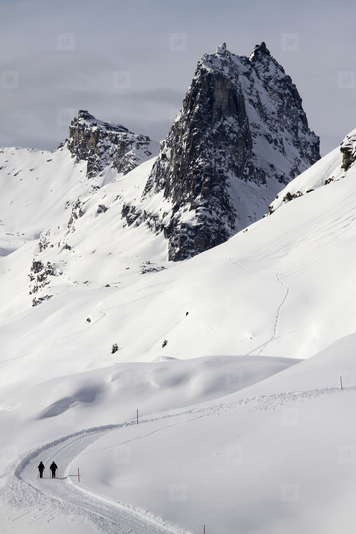 Snowy Mountain Trails  42