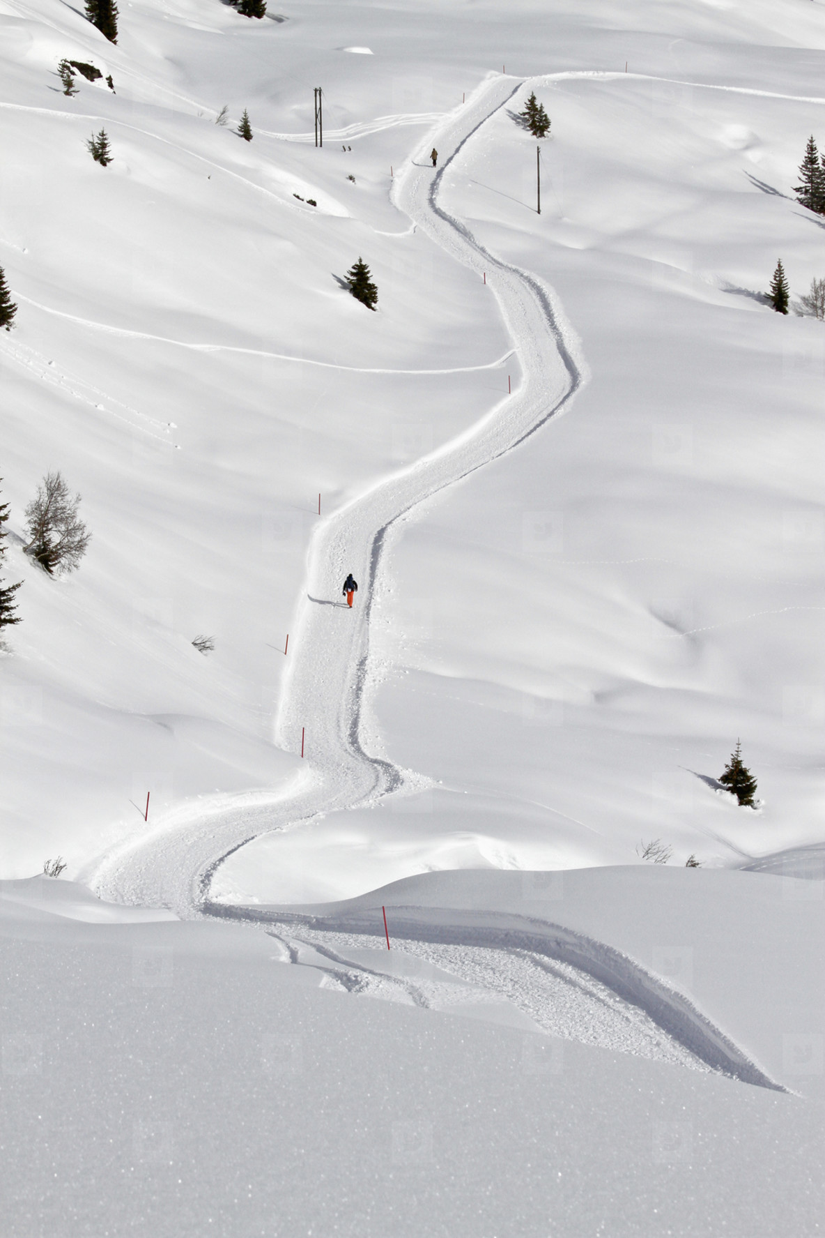 Snowy Mountain Trails  46