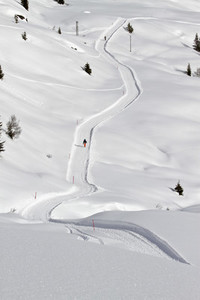Snowy Mountain Trails  46