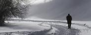 Snowy Mountain Trails  47