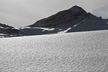 Snowy Mountain Trails 50