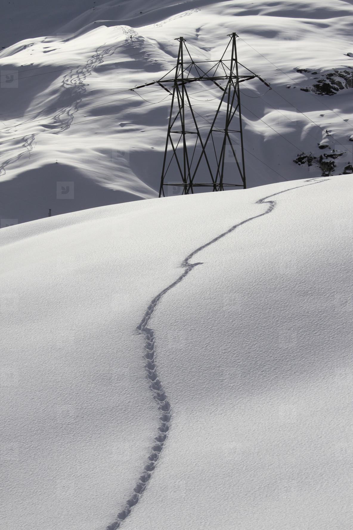 Snowy Mountain Trails  54