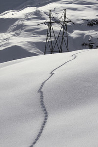 Snowy Mountain Trails 54