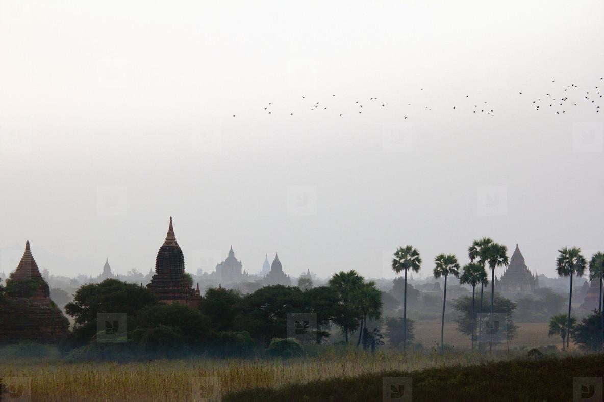 Buddhist Views  35