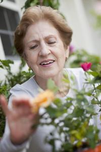 Retired Granny 12