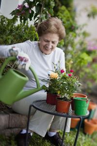 Retired Granny  37