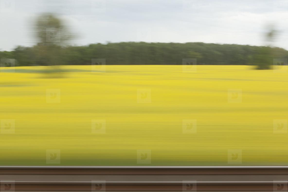 Train Views  08
