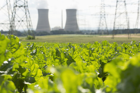 Nuclear Summer  13