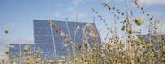 Solar Energy  09