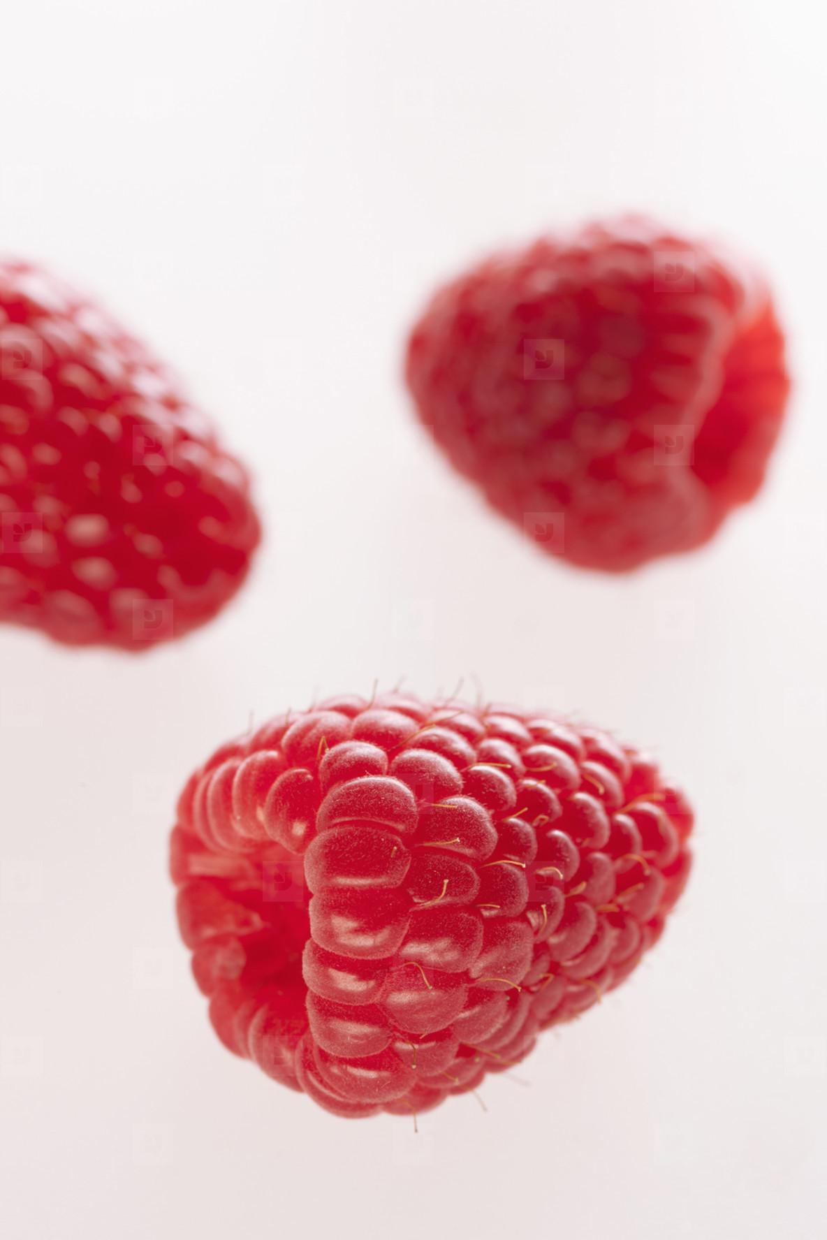 Strange Fruits  12