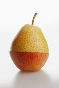 Strange Fruits 24