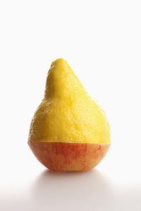 Strange Fruits 28