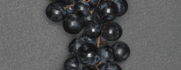 Strange Fruits  39