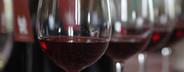 Wine Tasting  07