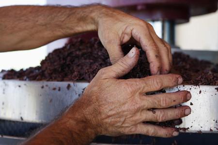 Wine Tasting 13