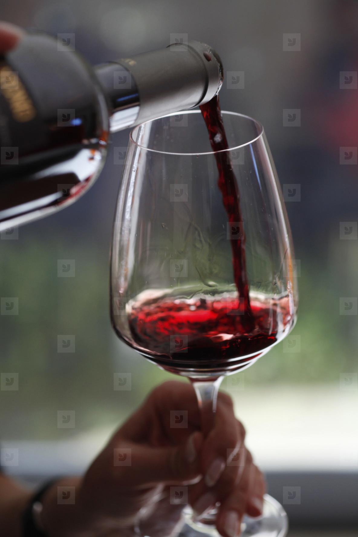 Wine Tasting  19